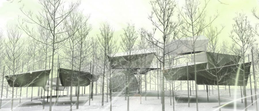 bosque_vegarquitectura_arboles-1500x647