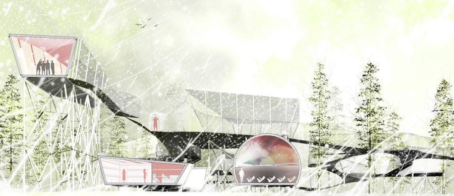 seccion_mirador_arquitectura_bosque-1391x600
